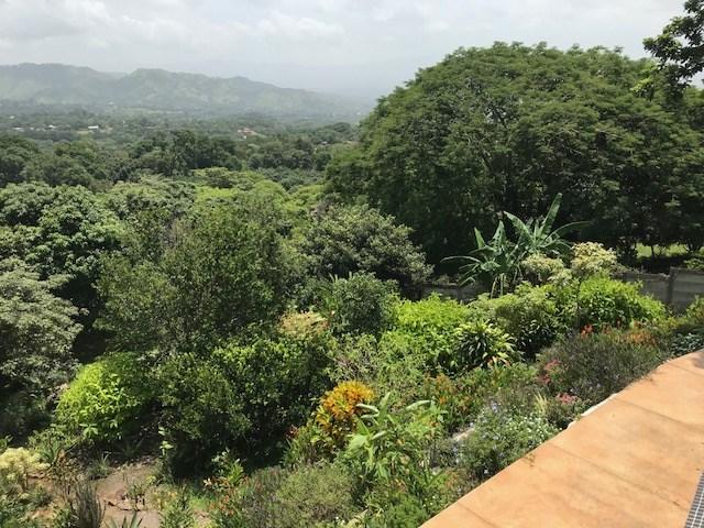 Gorgeous mountain home with amazing gardens & aquariums around the property