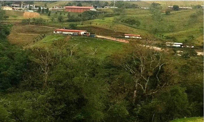 Farm of 348 hectares for sale in San Antonio de Barranca,  Naranjo Alajuela. J