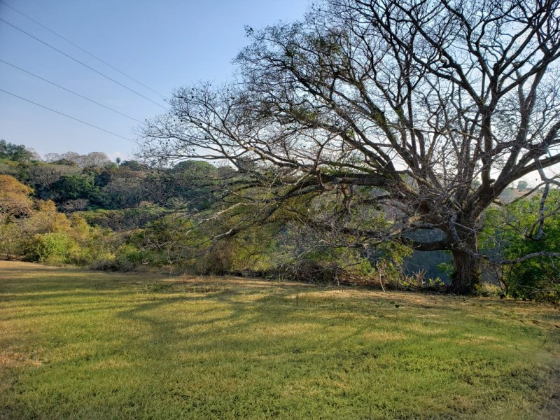 Land to develop with beautiful views in Carrillos, Alajuela - Re/Max