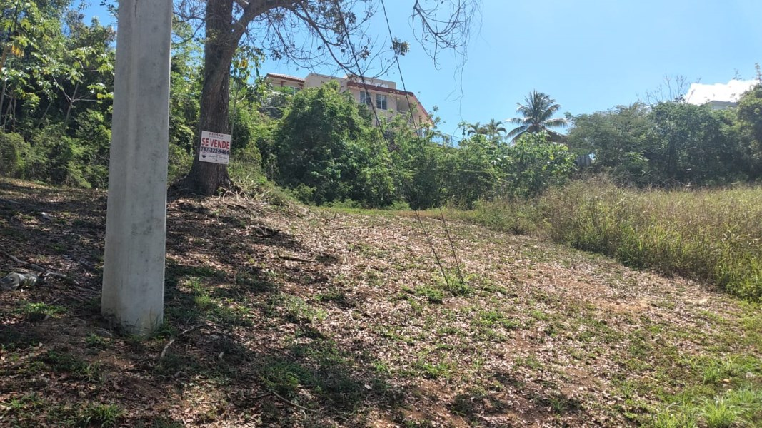 RE/MAX real estate, Puerto Rico, Aguadilla, Huge Lot in the northwest of the Island !