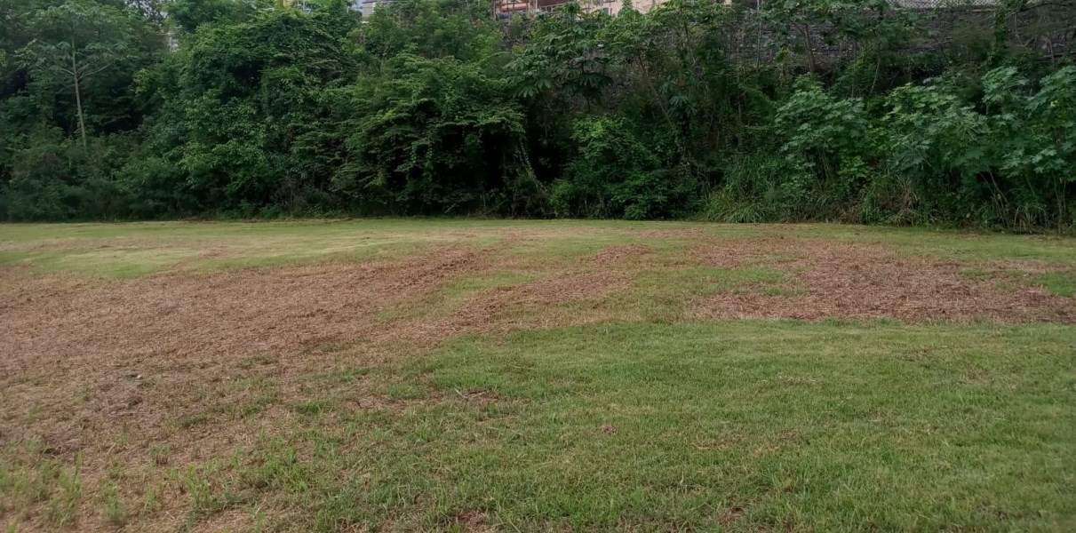 RE/MAX real estate, Puerto Rico, Aguadilla, Build your dream home on this huge private lot!