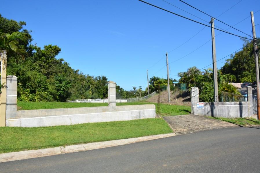 RE/MAX real estate, Puerto Rico, URB Golden Hls, Urb. Golden Hills, Dorado - Huge Lot!