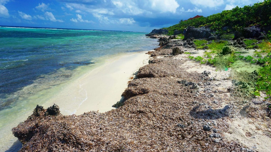 RE/MAX real estate, Cayman Islands, North East Coast, Northeast Coast Beach Front Lot
