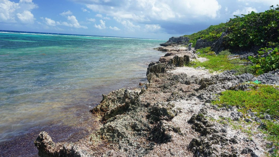 RE/MAX real estate, Cayman Islands, North East Coast, Northeast Coast Waterfront Lot