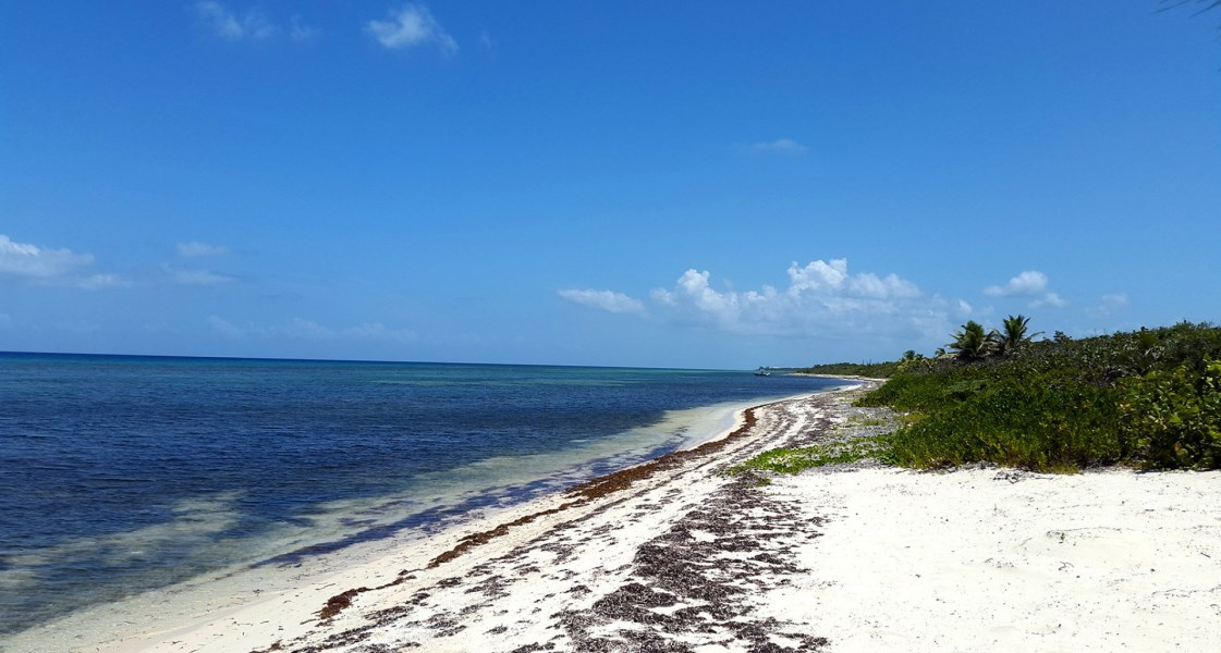 RE/MAX real estate, Cayman Islands, Little Cayman East, Freehold - Beachfront Acreage w