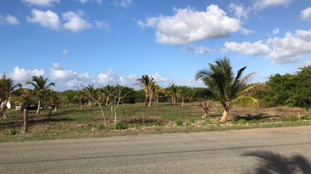 RE/MAX real estate, Cayman Islands, Bodden Town, Lookout Gardens 1 Acre Lot