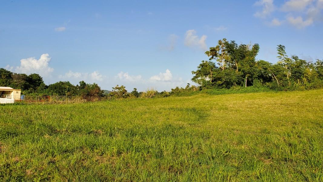 RE/MAX real estate, Puerto Rico, Alt Rio Grande, Lot for Sale in Praderas del Yunque, Rio Grande