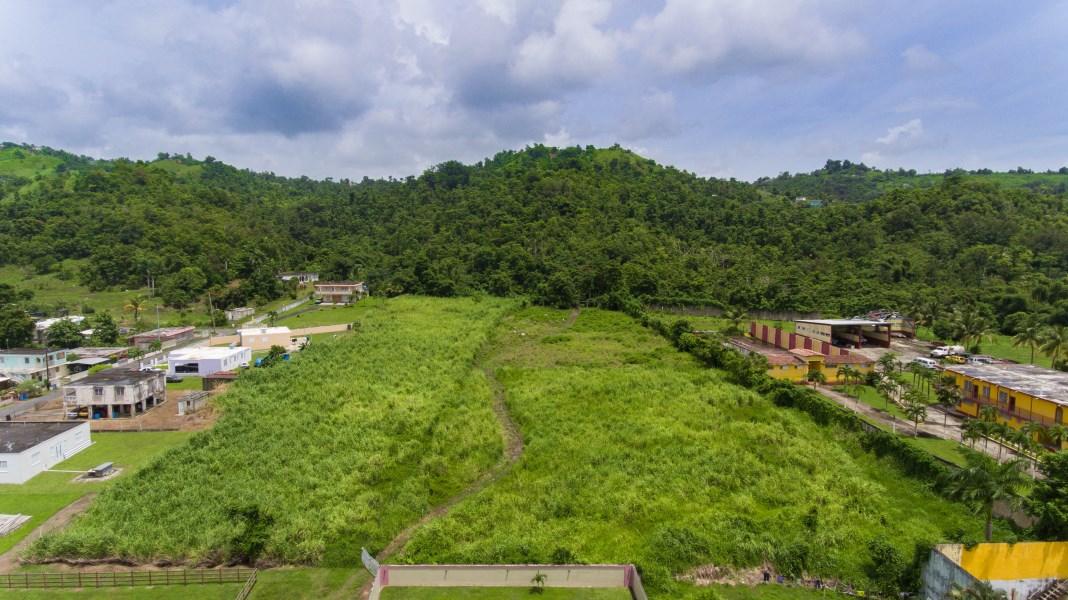 RE/MAX real estate, Puerto Rico, Yabucoa, 14.5 cuerdas de terreno en Bo. Calabazas