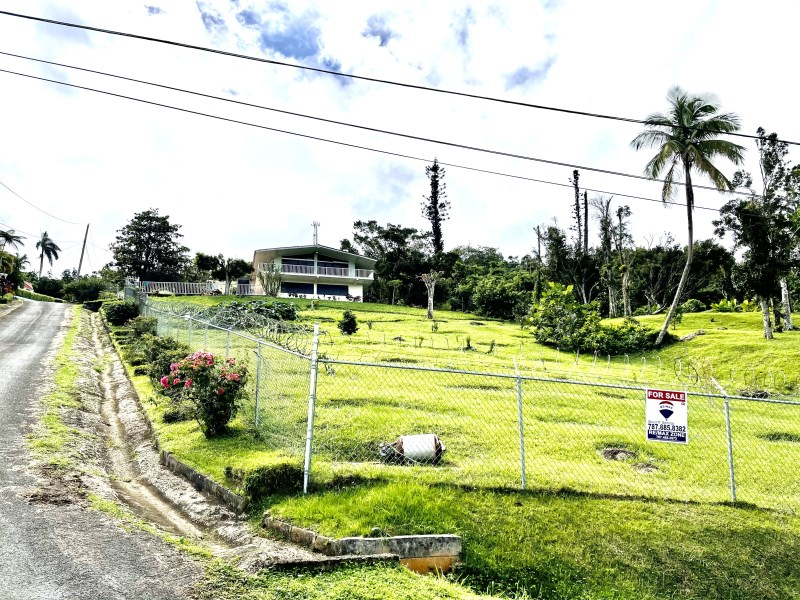 RE/MAX real estate, Puerto Rico, Alt De Caguas, Bo. Beatriz, sector- Piñas, Caguas