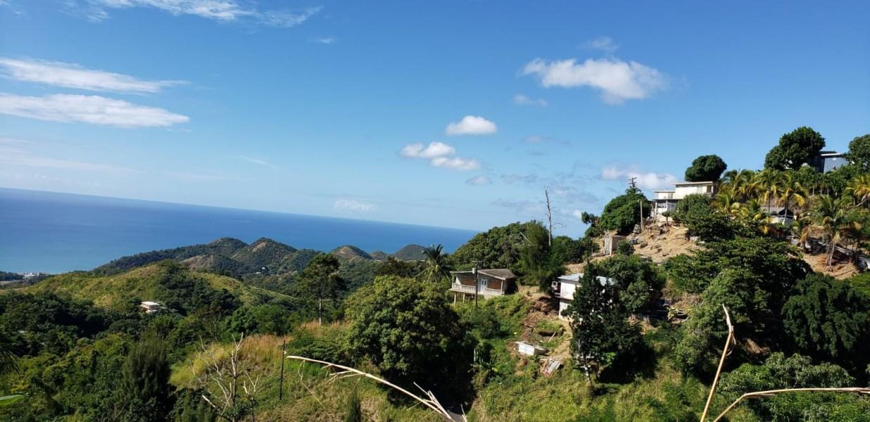RE/MAX real estate, Puerto Rico, Rincon, Bo Ayalaya, Rincon