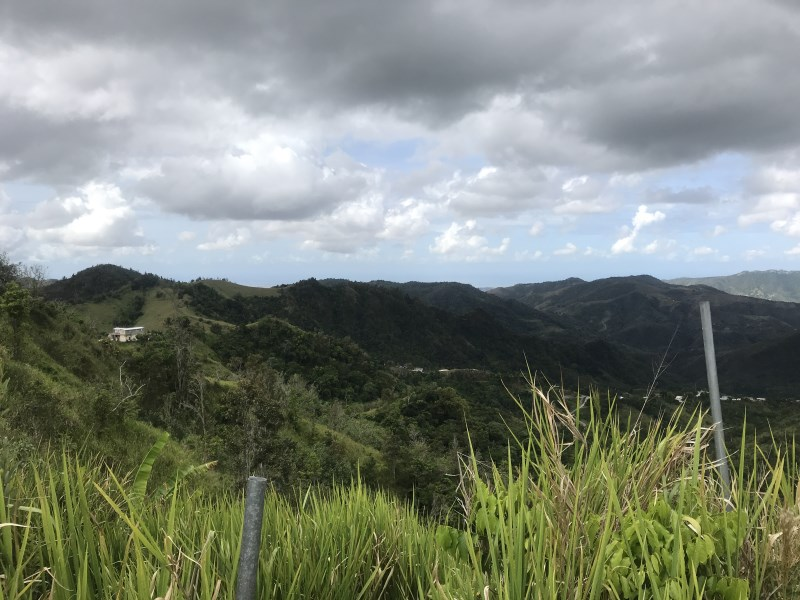 RE/MAX real estate, Puerto Rico, Alts De Coamo, 25 Acres in Bo. Pedro Garcia, Coamo
