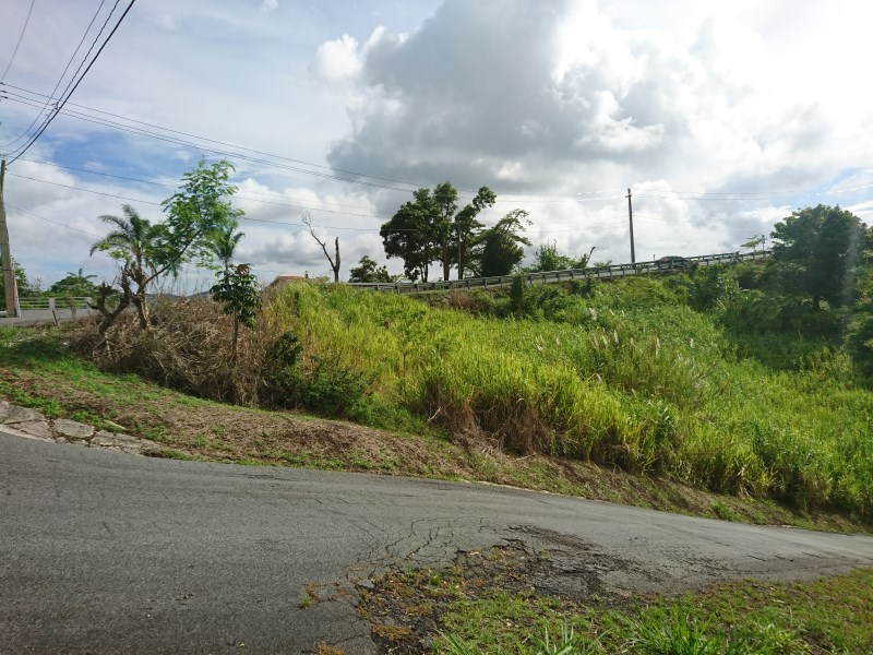 RE/MAX real estate, Puerto Rico, Jard De Rabanal, Incredible lot with enormous commercial potential is now available!