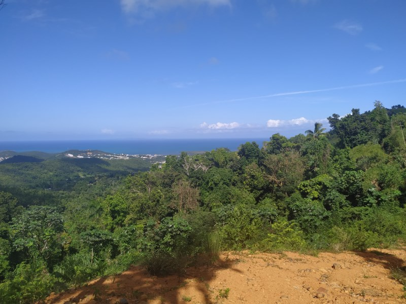 RE/MAX real estate, Puerto Rico, Ceiba, Ready to build with a Panoramic View!