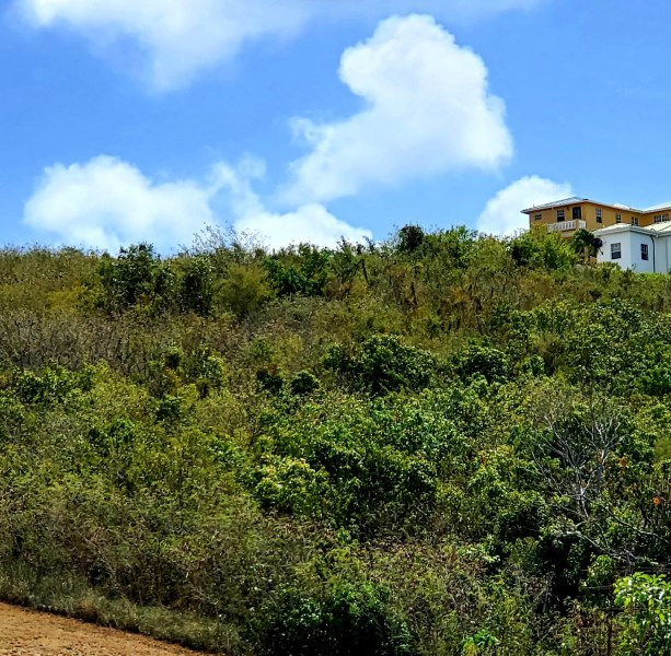 RE/MAX real estate, US Virgin Islands, Bugbyhole, New Listing  LotsAcres  Bugby Hole CO