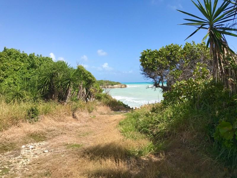 RE/MAX real estate, US Virgin Islands, Carlton, New Listing  LotsAcres St Croix  Carlton WE