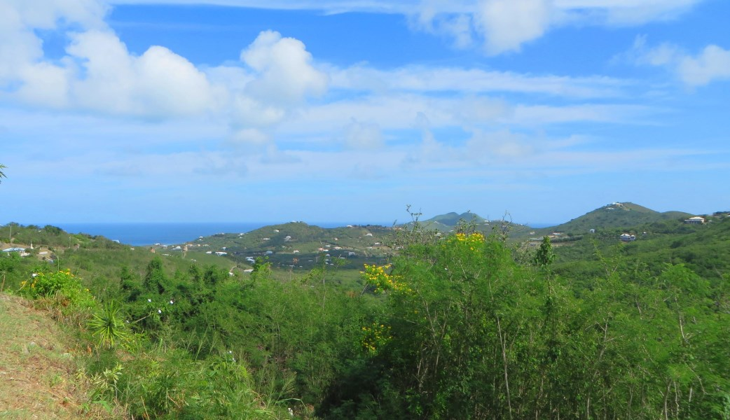 RE/MAX real estate, US Virgin Islands, Cotton Valley, Price Reduced  LotsAcres St Croix  Cotton Valley EB