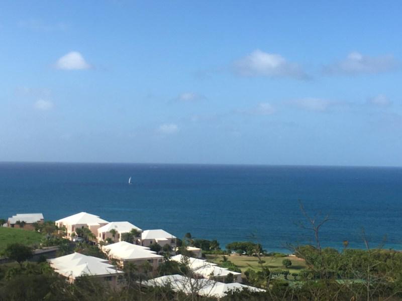 RE/MAX real estate, US Virgin Islands, Green Kay, New Listing  LotsAcres St Croix  Green Cay EA