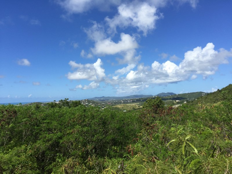 RE/MAX real estate, US Virgin Islands, Bugbyhole, New Listing  LotsAcres St Croix  Bugby Hole CO