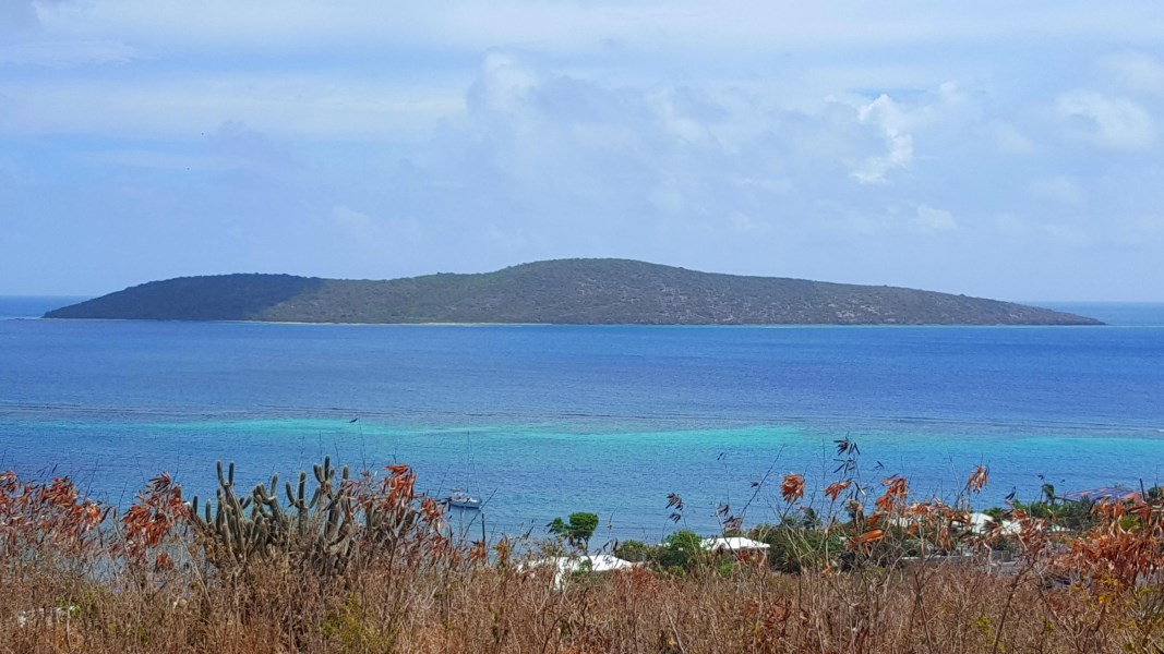 RE/MAX real estate, US Virgin Islands, Cotton Valley, New Listing  LotsAcres St Croix  Cotton Valley EB