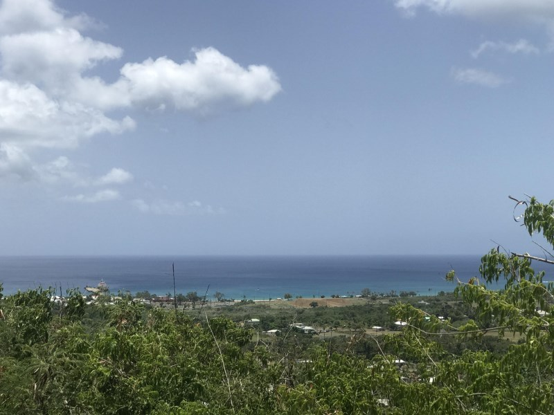 RE/MAX real estate, US Virgin Islands, La Grange, New Listing  LotsAcres St Croix  La Grange WE