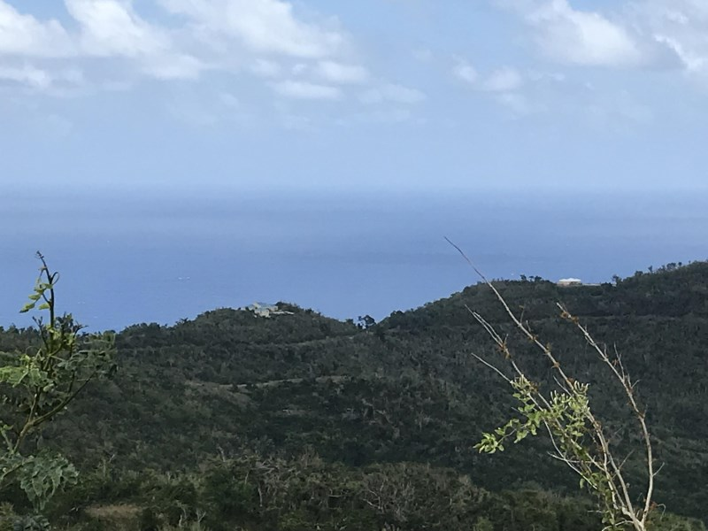 RE/MAX real estate, US Virgin Islands, Hard Labour, New Listing  LotsAcres St Croix  Hard Labor PR
