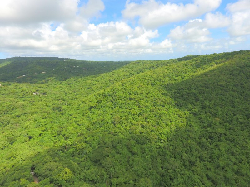 RE/MAX real estate, US Virgin Islands, Orange Grove, Status Change  LotsAcres St Croix  Orange Grove WE