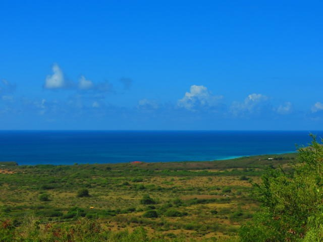 RE/MAX real estate, US Virgin Islands, Grange, New Listing  LotsAcres St Croix  Grange Stock Estate CO