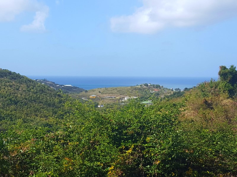 RE/MAX real estate, US Virgin Islands, Marienhoj Estate, Price Reduced  LotsAcres St Croix  Marienhoj EA