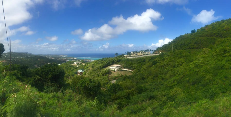 RE/MAX real estate, US Virgin Islands, Herman Hill Estate, New Listing  LotsAcres St Croix  Hermon Hill CO