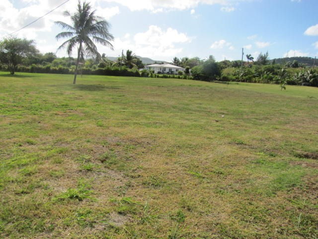 RE/MAX real estate, US Virgin Islands, La Grande Princesse, New Listing  LotsAcres St Croix  La Grande Princesse CO