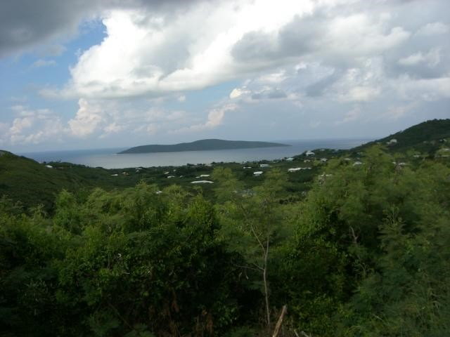 RE/MAX real estate, US Virgin Islands, Hope and Carlton Land Estate, Price Reduced  LotsAcres St Croix  Hope  Carton Hill EB