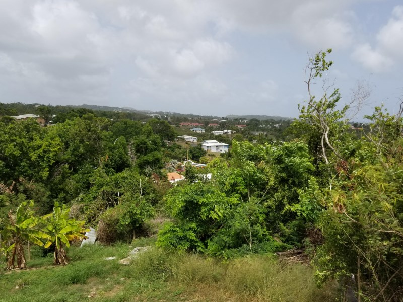 RE/MAX real estate, US Virgin Islands, Strawberry Hill, New Listing  LotsAcres St Croix  Strawberry Hill QU