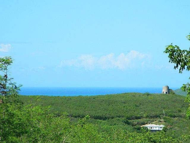 RE/MAX real estate, US Virgin Islands, Hope and Carlton Land Estate, New Listing  LotsAcres St Croix  Hope  Carton Hill EB