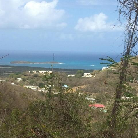RE/MAX real estate, US Virgin Islands, Mount Washington and Washington Hill Estate, Price Reduced  LotsAcres St Croix  Union  Mt. Washington EA