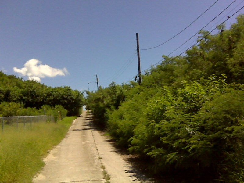 RE/MAX real estate, US Virgin Islands, Virgin Islands of the United States, New Listing  LotsAcres St Croix  V.I. Corp Lands PR