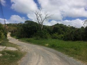 RE/MAX real estate, US Virgin Islands, Rattan and Belvedere, New Listing  LotsAcres  Rattan QU