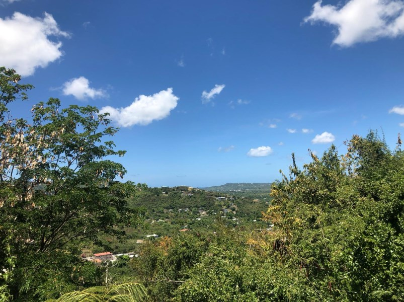 RE/MAX real estate, US Virgin Islands, Saint Georges Hill Estate, New Listing  LotsAcres  St. George PR