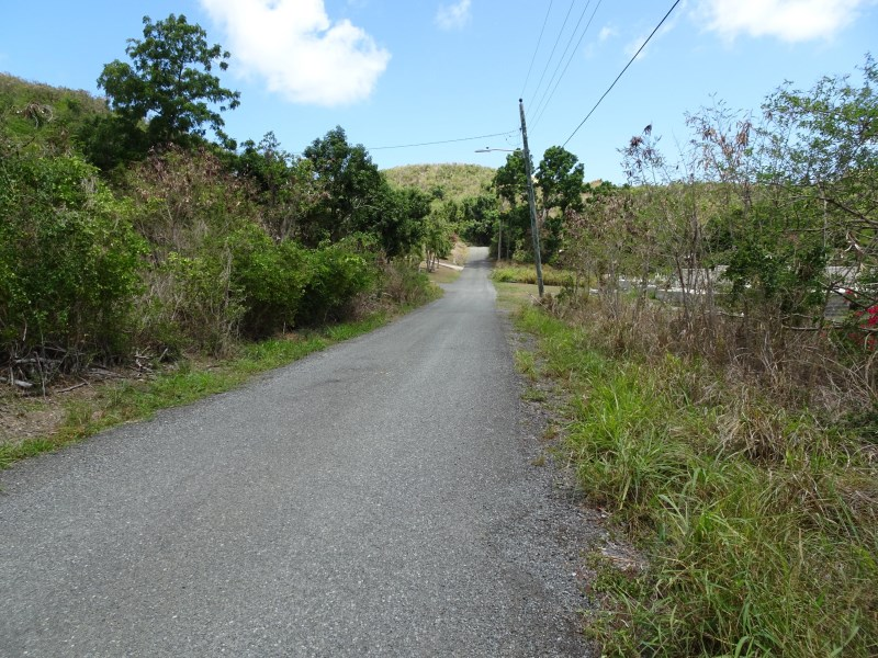 RE/MAX real estate, US Virgin Islands, Mount Pleasant Estate, New Listing  LotsAcres St Croix  Mt. Pleasant EA
