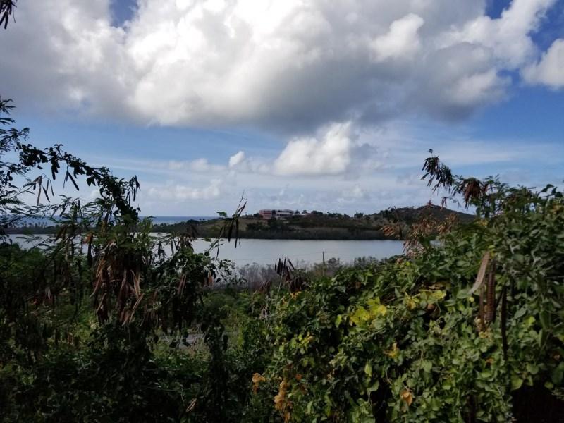 RE/MAX real estate, US Virgin Islands, Boetzberg Estate, New Listing  LotsAcres St Croix  Boetzberg EA