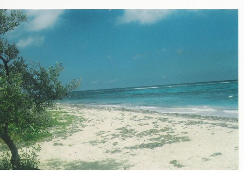 RE/MAX real estate, US Virgin Islands, Salt River Estate, Back on Market  LotsAcres  Salt River NB