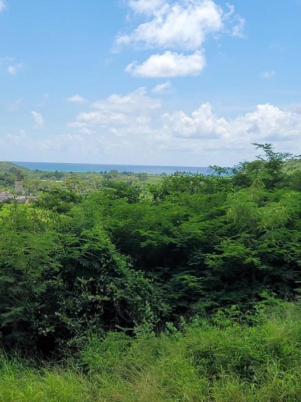 RE/MAX real estate, US Virgin Islands, Virgin Islands of the united States, Back on Market  LotsAcres  V.I. Corp Lands PR