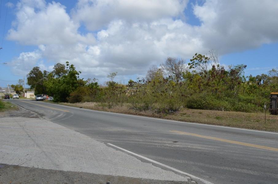 RE/MAX real estate, US Virgin Islands, Castle Coakley, New Listing  LotsAcres  Castle Coakley QU
