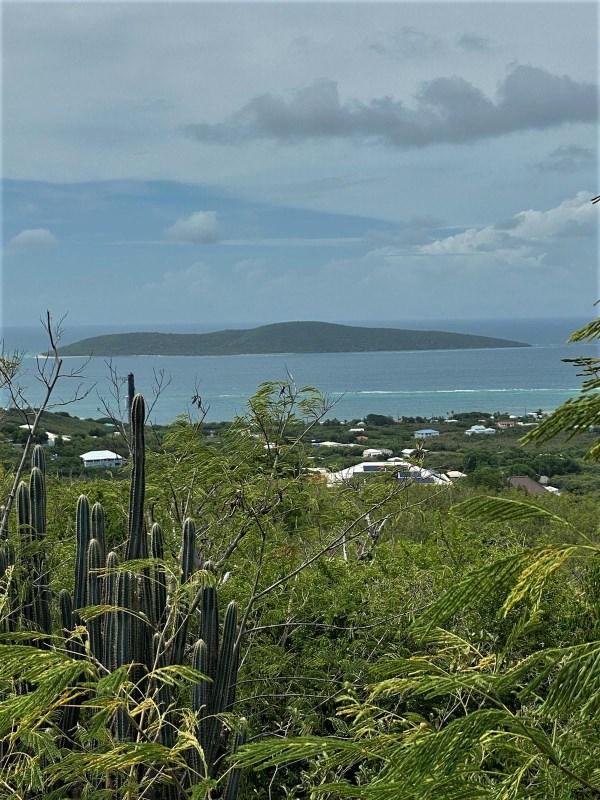 RE/MAX real estate, US Virgin Islands, Hope and Carlton Land Estate, New Listing  LotsAcres  Hope  Carton H EB