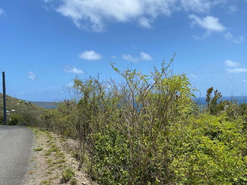 RE/MAX real estate, US Virgin Islands, Catharinas Hope, New Listing  LotsAcres  Catherines Hope EB