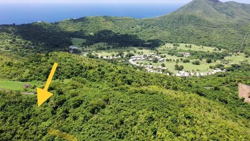 RE/MAX real estate, US Virgin Islands, Hard Labour, New Listing  LotsAcres  Hard Labor PR