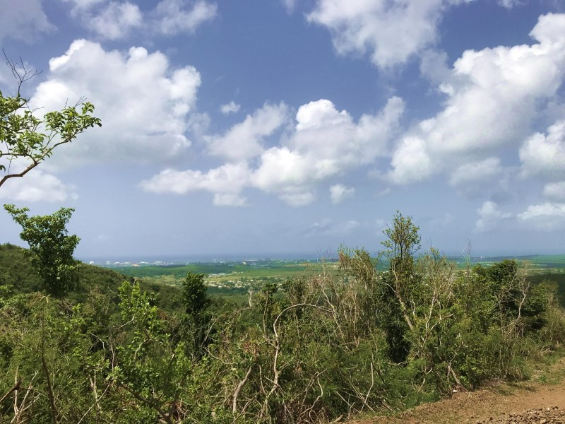 RE/MAX real estate, US Virgin Islands, Clairmont, New Listing  LotsAcres  Clairmont NB