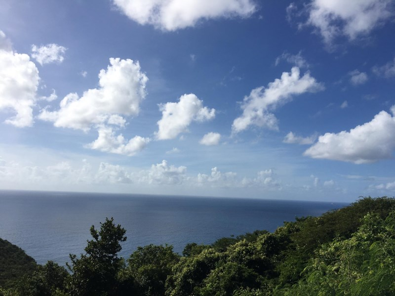 RE/MAX real estate, US Virgin Islands, Botany Bay Estate, Price Reduced  LotsAcres  Botany Bay WE