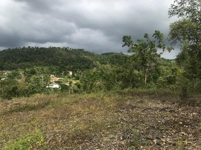 RE/MAX real estate, Puerto Rico, Ciales, Solar  Hato Viejo, Ciales