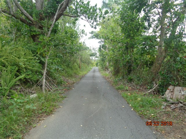 RE/MAX real estate, Puerto Rico, Vega Alta, 1.3 cuerdas de terreno en Vega Alta