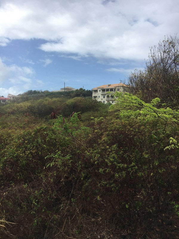 RE/MAX real estate, Grenada, Fort Jeudy, Fort Jeudy sea view